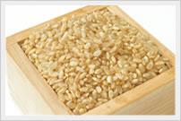 「ミクロビごはん」の発芽玄米は、「スパイラルエンザイム生酵素」により微生物が分解・発酵している状態です。