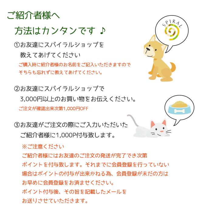 お友達紹介ページ2